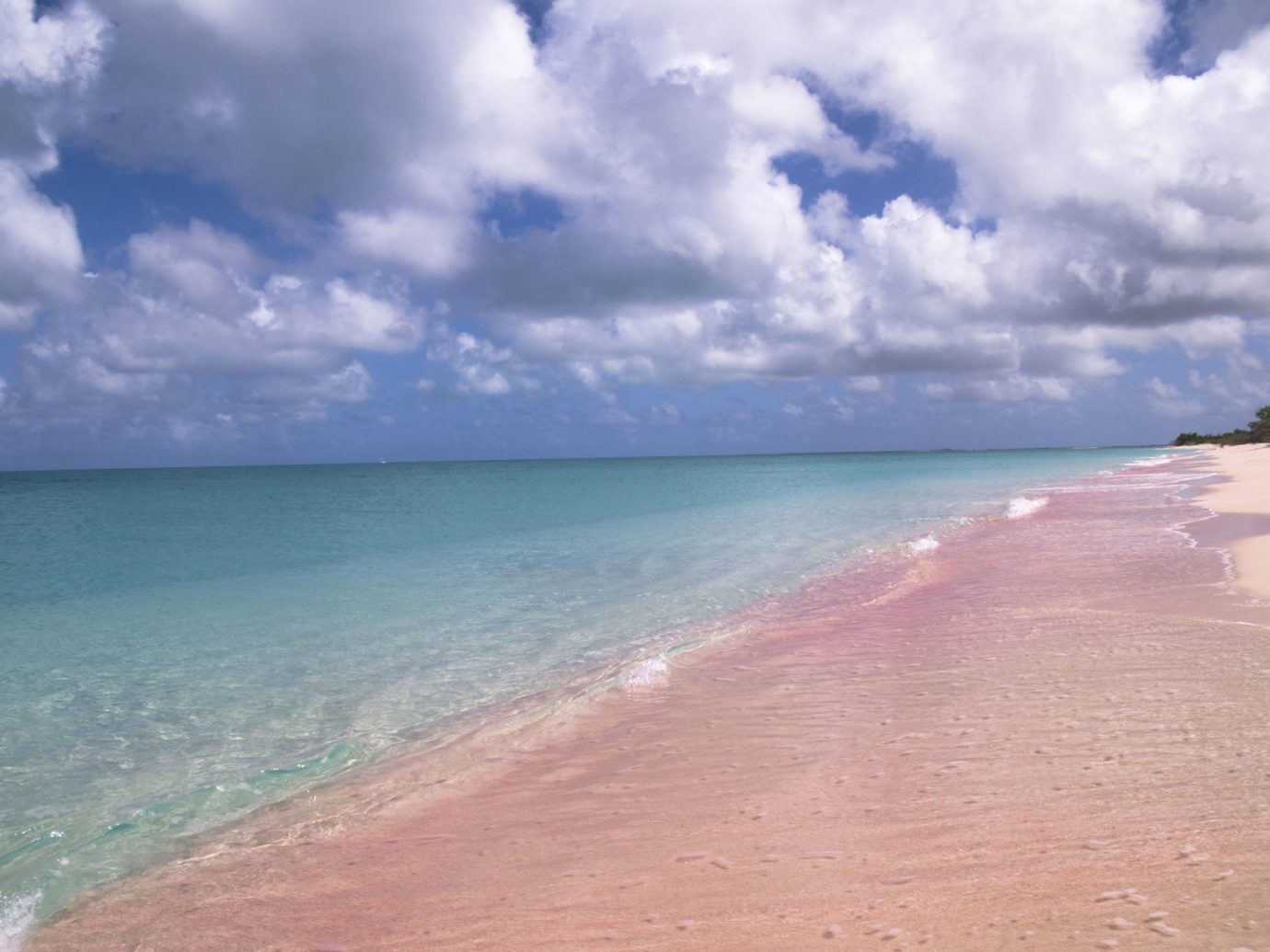 Pink Sands Beach in the Bahamas