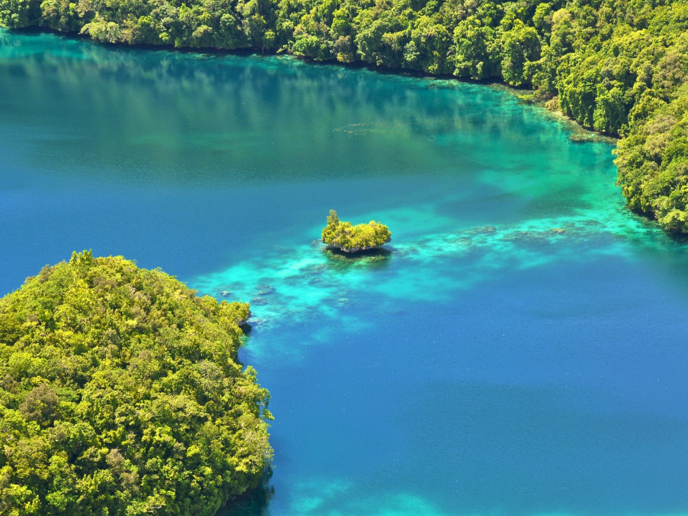 Islands Offbeat Trip Ideas tree water reef landform body of water River Nature Lake Lagoon Sea surrounded