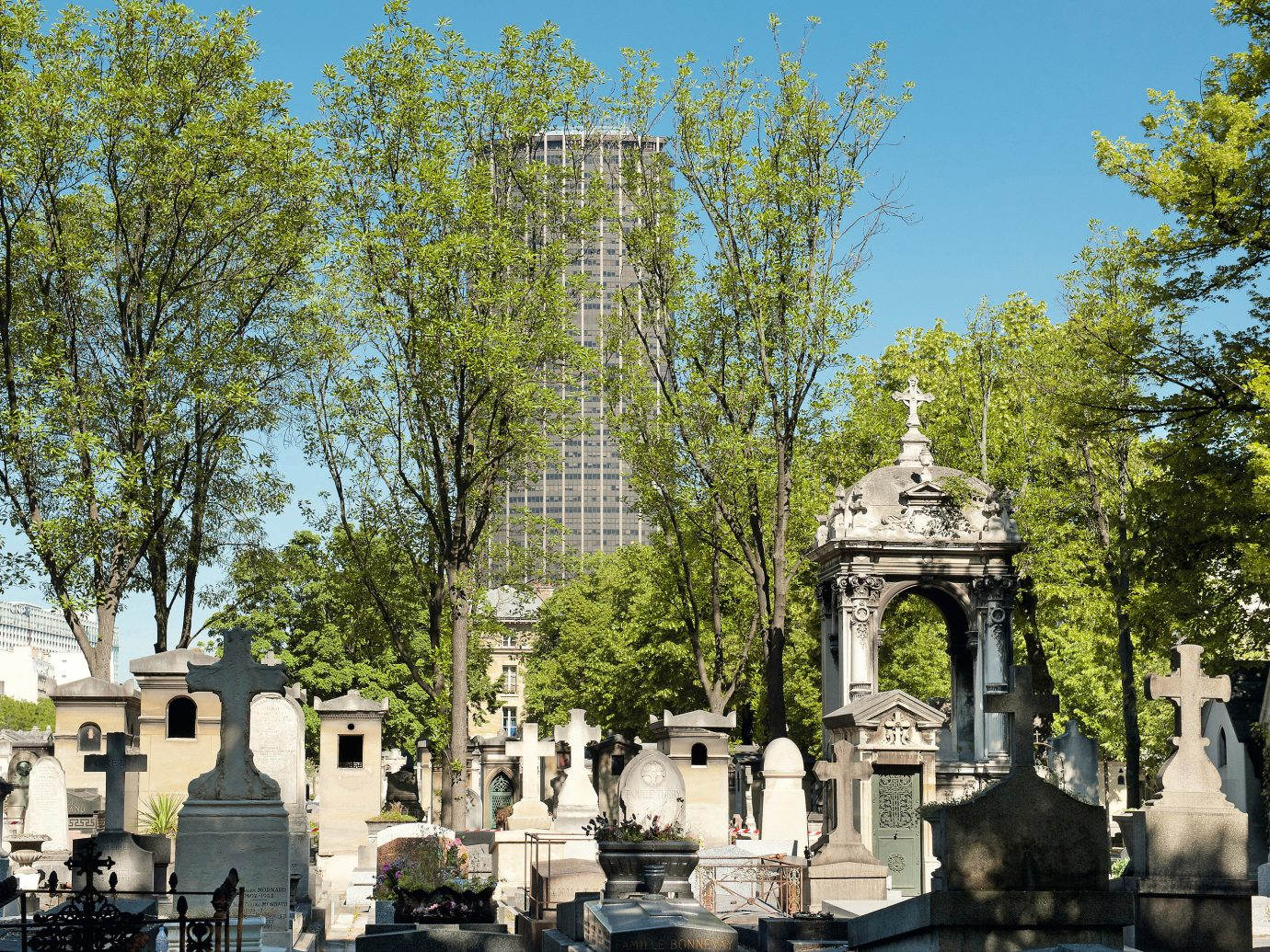 Romance Trip Ideas tree outdoor cemetery geographical feature building monument ancient history