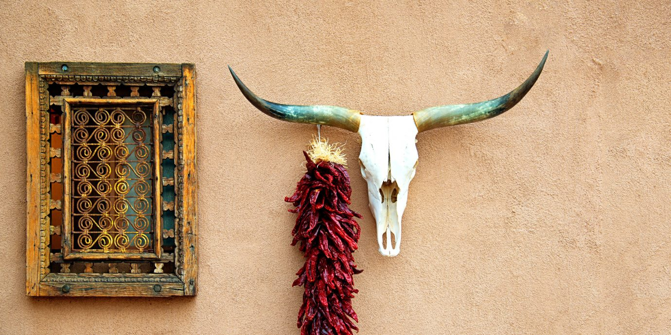 Travel Tips Trip Ideas wall art horn antler jewellery material
