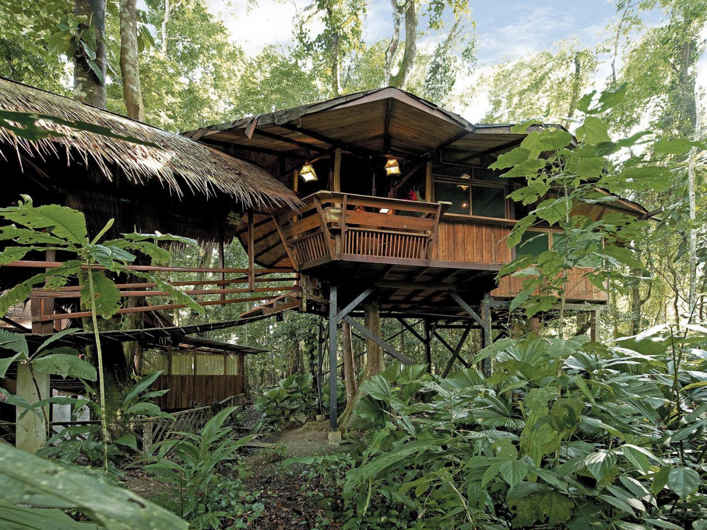 View of a cabin at Tree House Hotel in Punta Uva Costa Rica