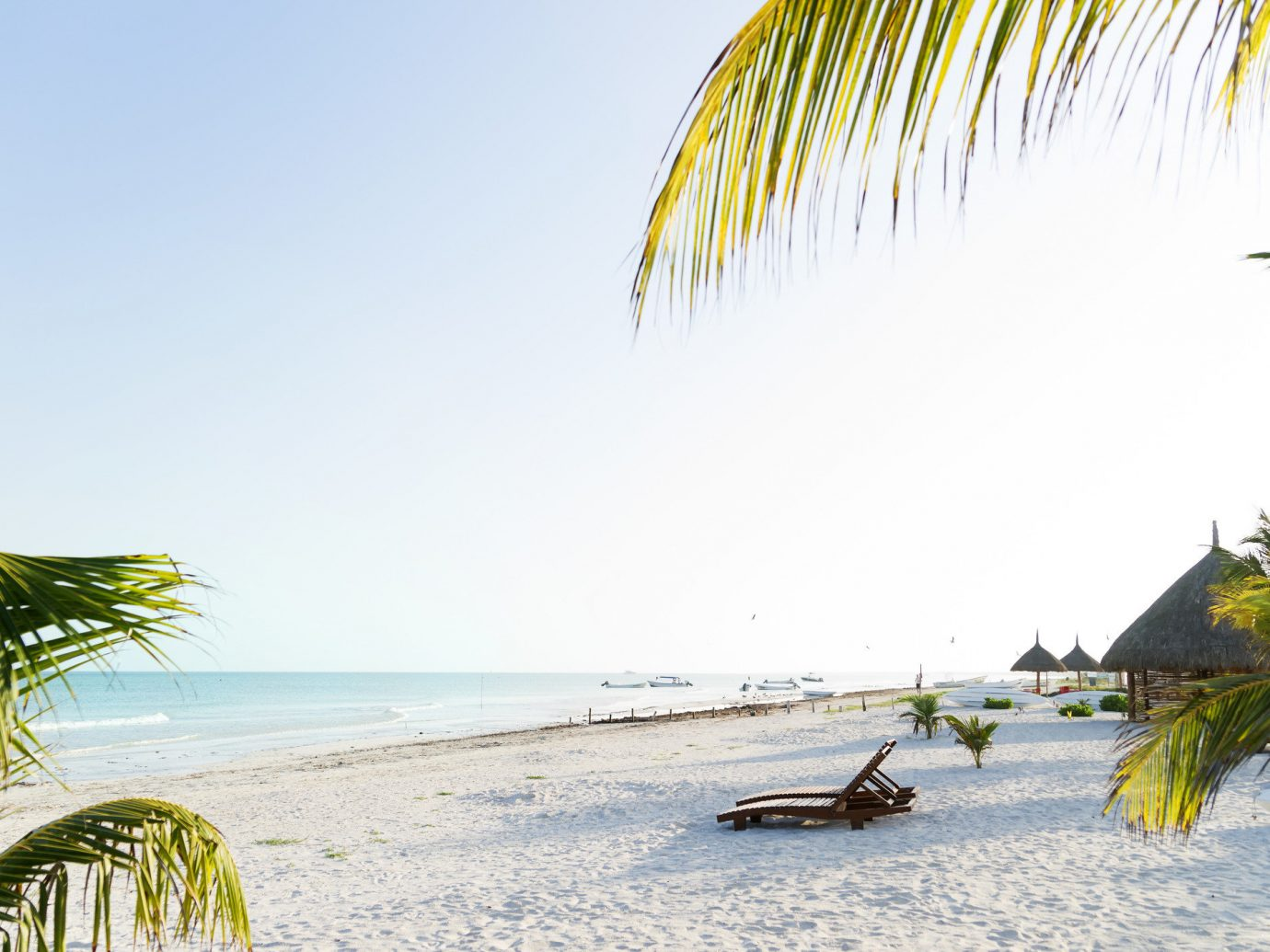 Mexico Secret Getaways Trip Ideas Weekend Getaways sky outdoor water Beach shore plant body of water tree vacation Sea Ocean caribbean Coast arecales palm family tropics sunlight bay palm sand sunny Resort day sandy