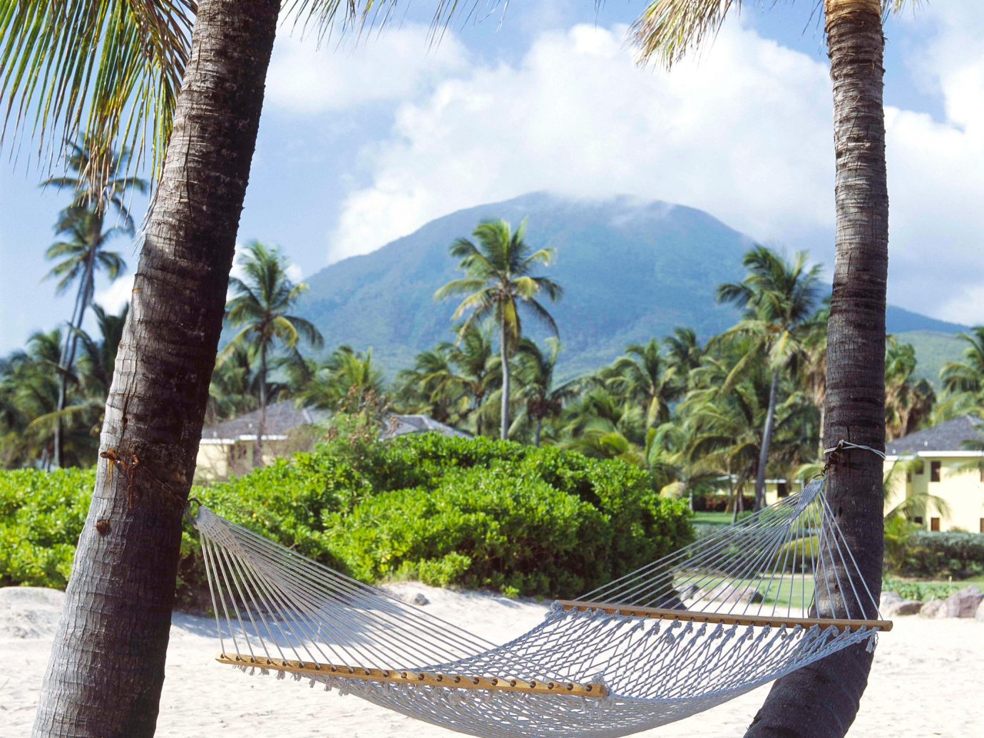 Grounds Hotels Islands Luxury Luxury Travel Mountains Scenic views Trip Ideas Tropical tree outdoor sky ground Beach vacation palm hammock arecales tropics palm family plant Resort walkway Sea caribbean trunk