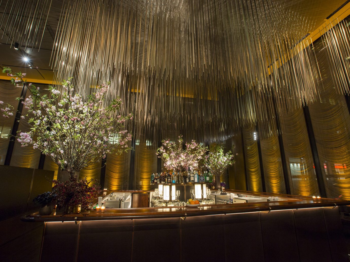 Trip Ideas indoor Lobby night light ceiling lighting interior design meal restaurant christmas lights Bar ballroom