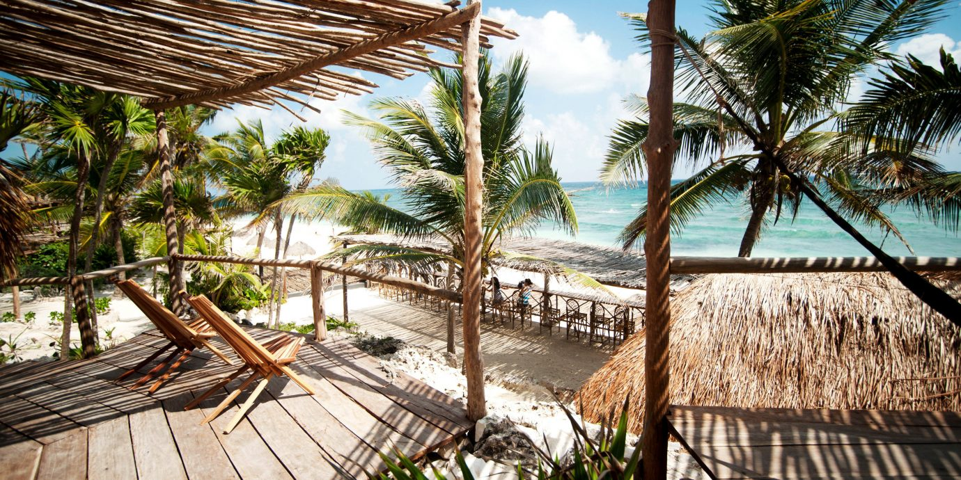 Beachfront Eco Hotels Island Patio Solo Travel Trip Ideas tree outdoor bed Resort property plant palm vacation wooden arecales Beach tropics estate walkway palm family caribbean park Jungle area Garden colorful sunny furniture bushes surrounded shade