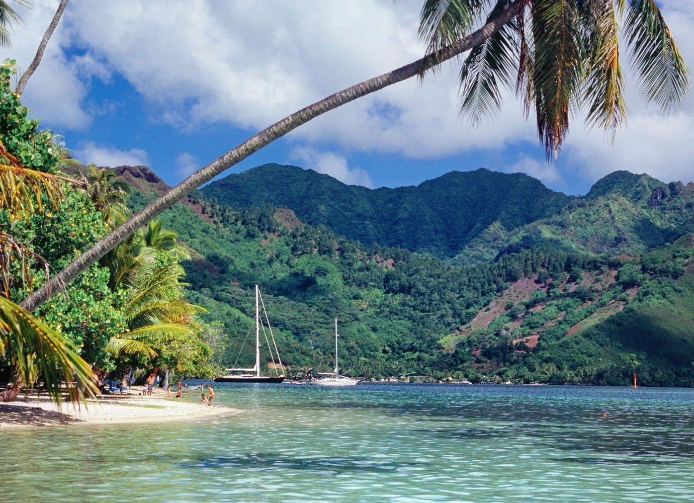 Trip Ideas tree outdoor water mountain landform geographical feature body of water Sea Lake River vacation background tropics Nature Coast bay tourism plant caribbean Beach Jungle boating Island palm surrounded shore day