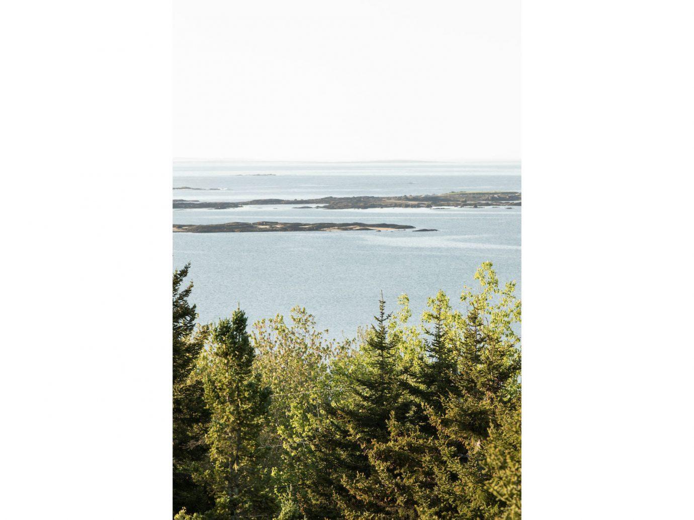 Influencers + Tastemakers ecosystem shore Coast water Sea land lot