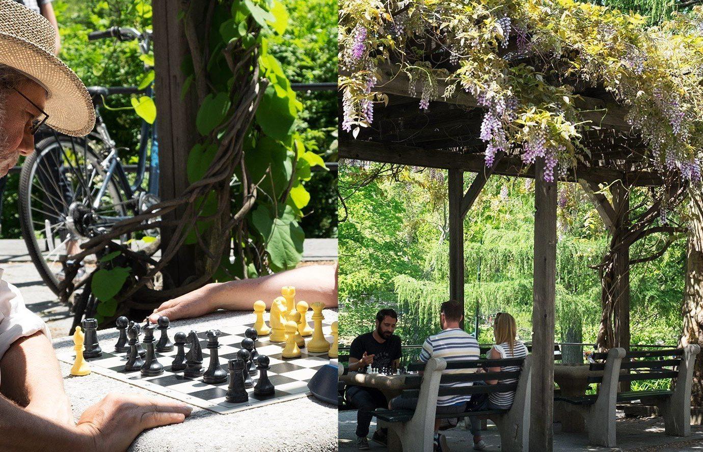 Travel Tips tree outdoor person flower Garden games restaurant
