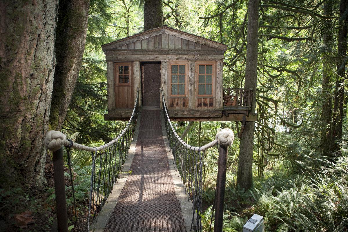 Hotels tree outdoor building habitat woodland Forest estate bridge Garden trail Jungle cottage outdoor structure shrine area park wood wooded