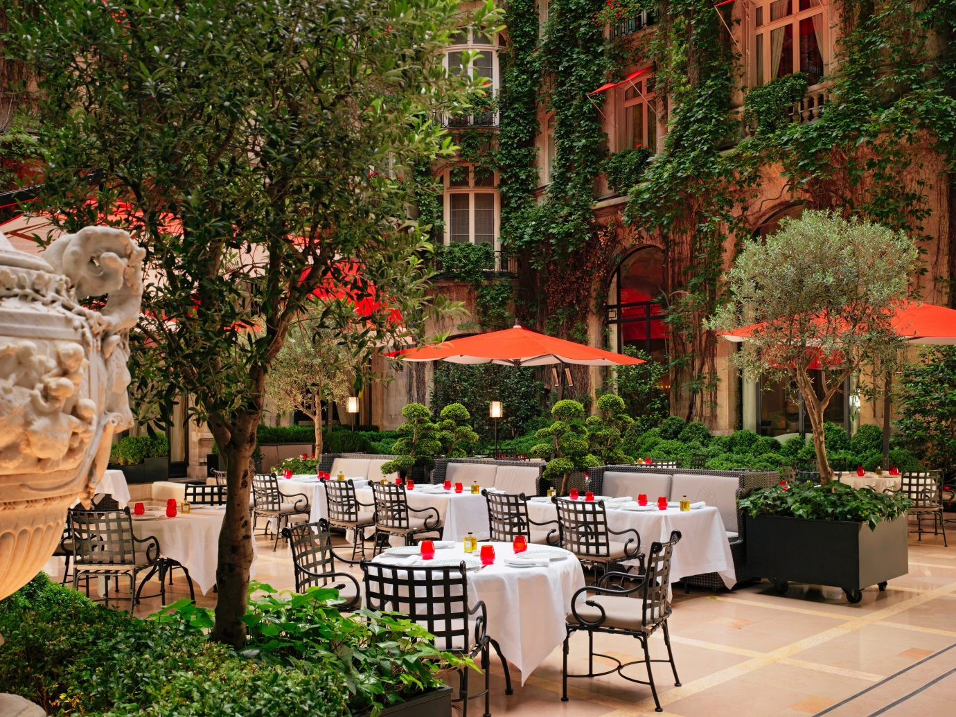 Hotels Luxury Travel tree outdoor floristry Courtyard Garden flower restaurant backyard plaza