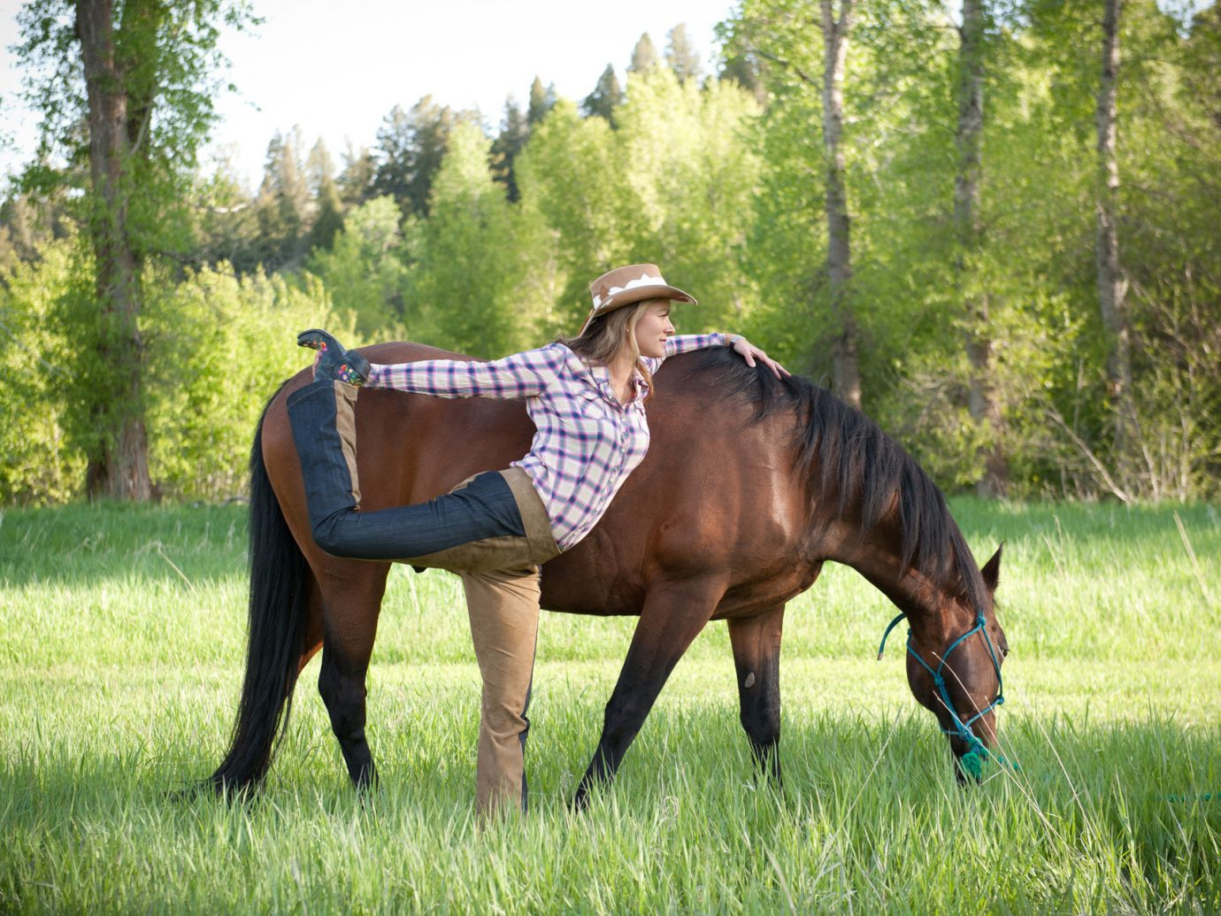 calm Country Countryside Greenery Health + Wellness horse horseback riding Meditation Retreats Nature Outdoor Activities Outdoors park remote serene Spa Retreats stretch trees Trip Ideas western woman yoga Yoga Retreats tree grass outdoor pasture mare trail riding animal endurance riding grazing grassland mammal brown stallion equestrianism mustang horse meadow horse like mammal pack animal prairie eventing Ranch lawn equestrian sport