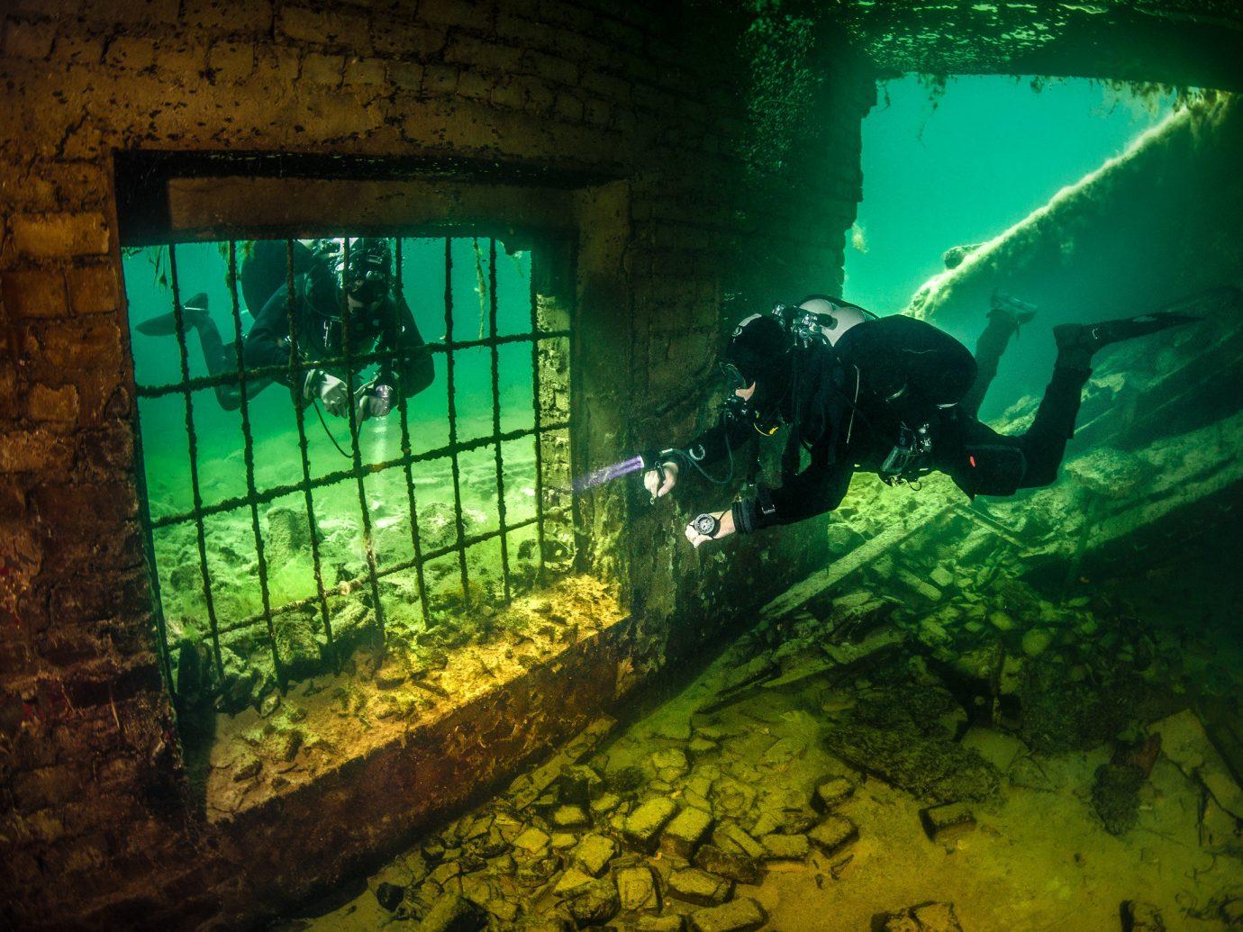 Offbeat green marine biology underwater biology swimming screenshot aquarium