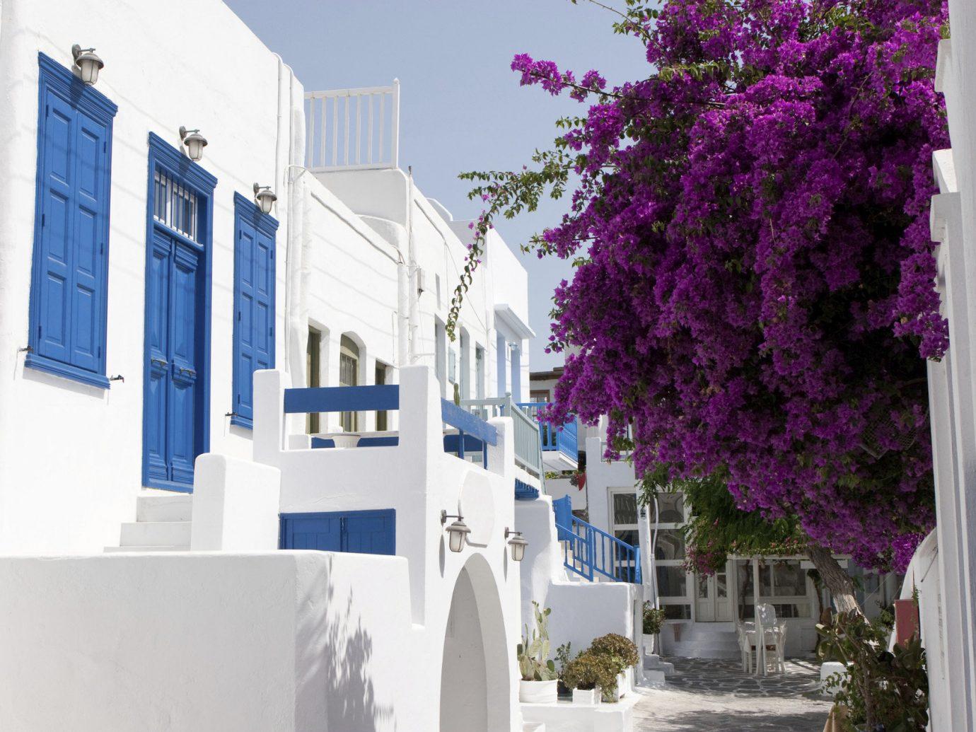 Trip Ideas outdoor Town neighbourhood house residential area facade home street flower