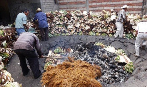 Food + Drink ground outdoor person rock soil pile vegetable