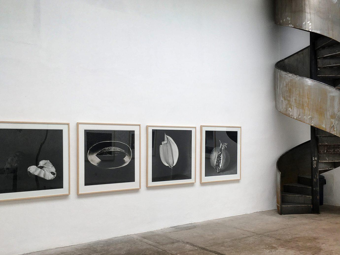 City Mexico City Trip Ideas indoor floor exhibition furniture product design interior design shelving shelf room