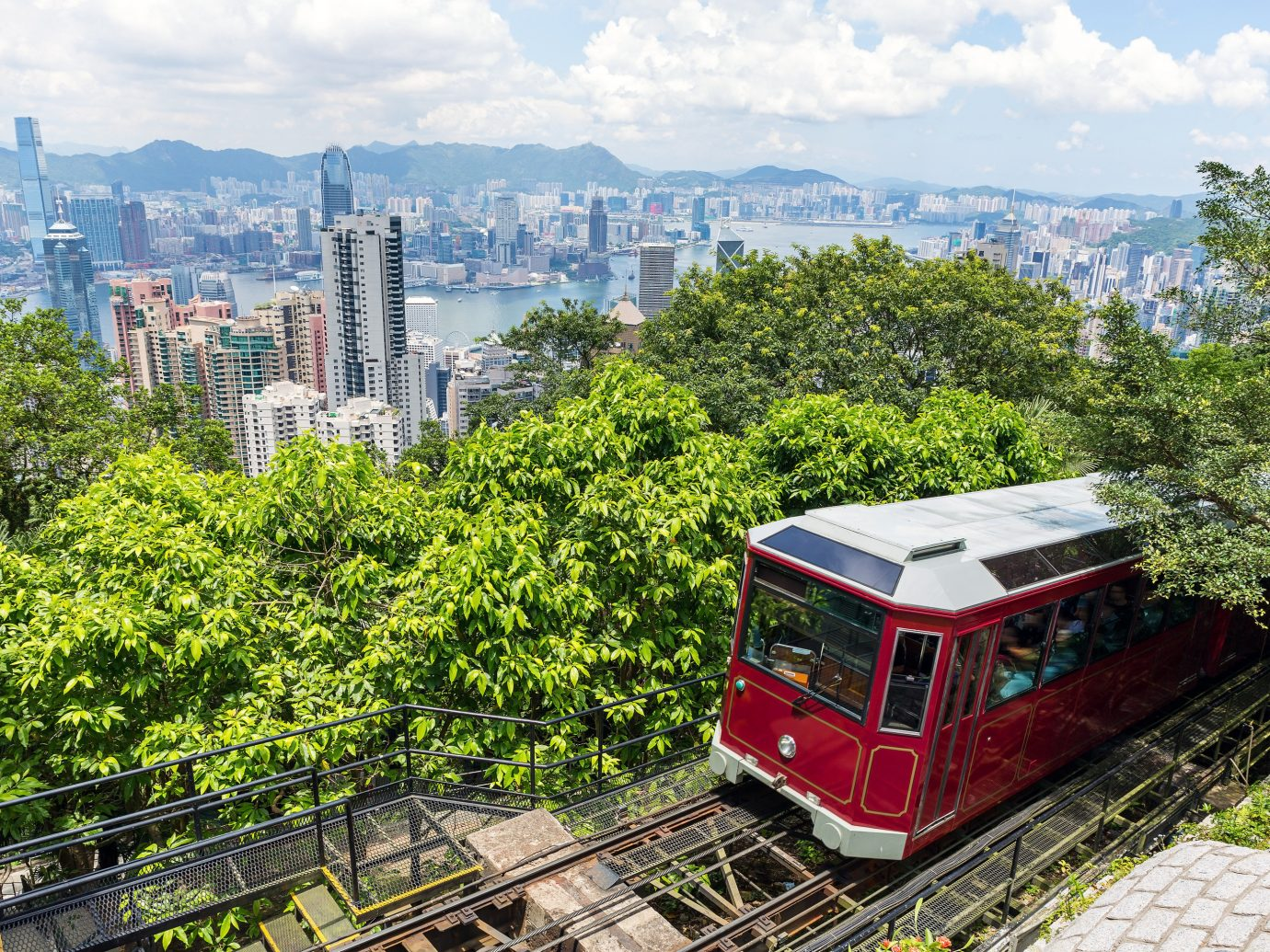 Travel Tips tree outdoor metropolitan area transport urban area City red woody plant plant rolling stock cable car metropolis track funicular skyline vehicle sky real estate landscape cityscape skyscraper public transport tower block traveling