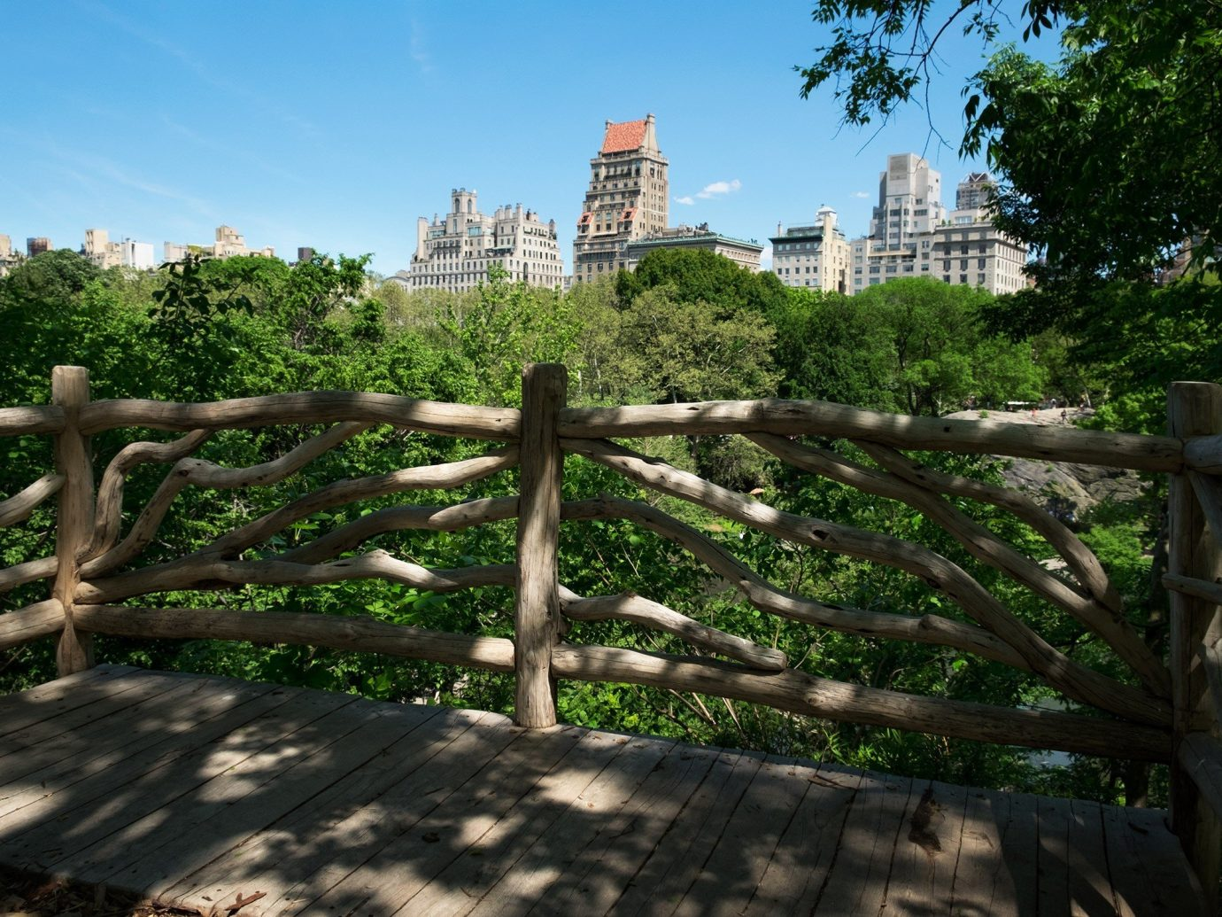 Travel Tips outdoor tree ecosystem park botany Garden wooden flower Jungle Fence Ruins plant day
