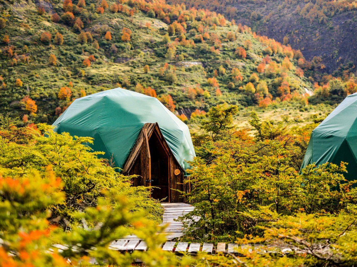 Nature wilderness leaf ecosystem plant tree autumn biome national park landscape hut grass mountain hill field plant community tent sky