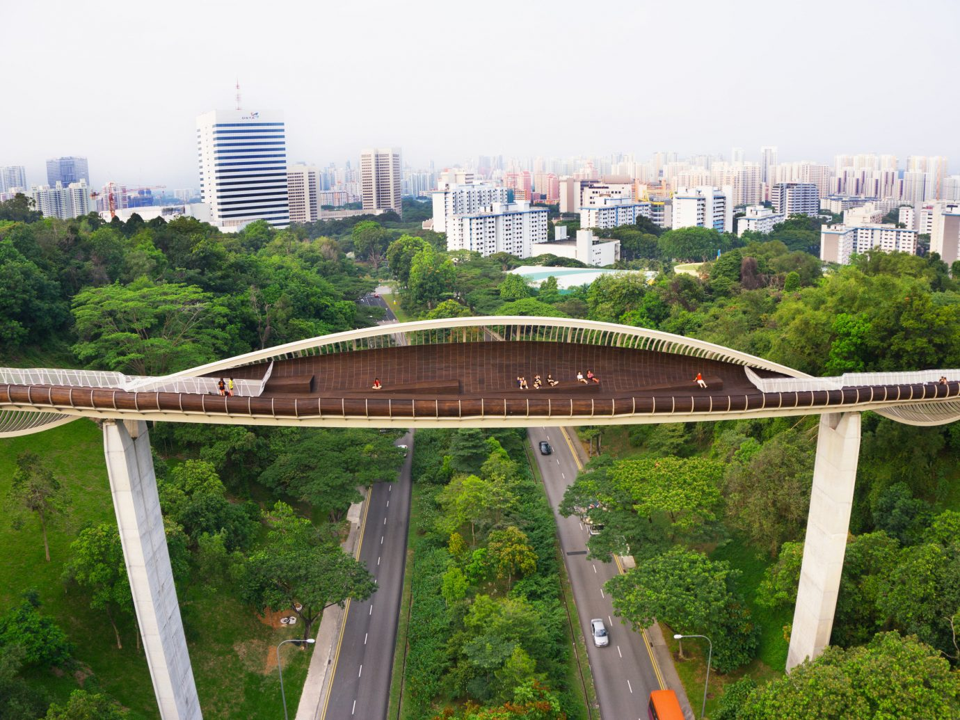 Offbeat Singapore Trip Ideas tree outdoor sky bridge overpass transport landmark urban area City River arch bridge viaduct skyway nonbuilding structure cityscape traveling cable stayed bridge suspension bridge