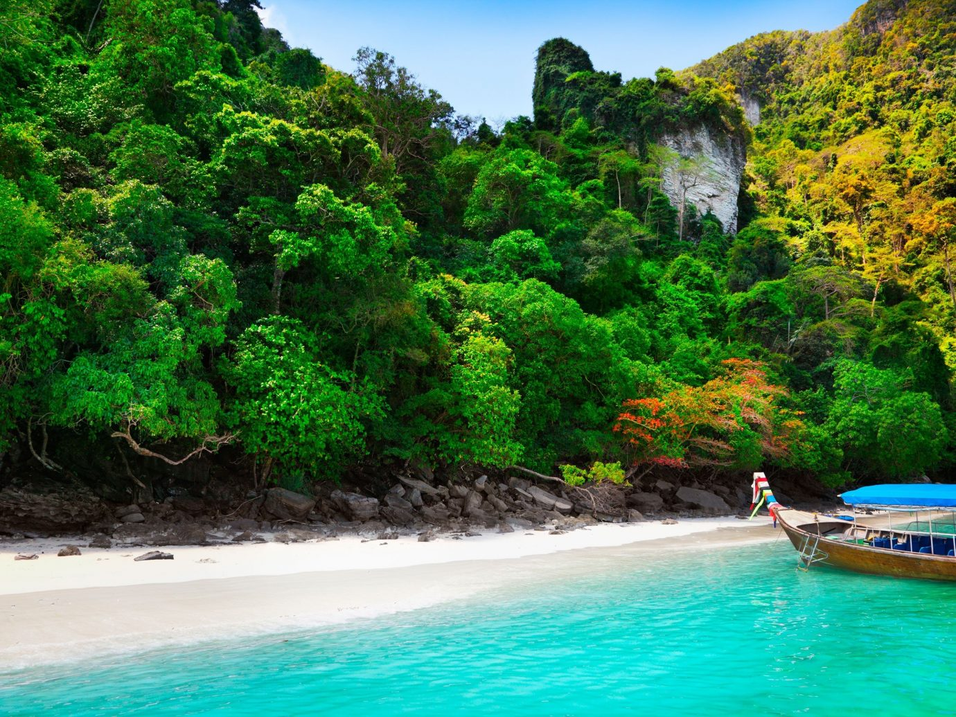 Trip Ideas tree water outdoor landform Pool geographical feature body of water River vacation water sport Sea tropics bay Jungle caribbean Lagoon Island rainforest water feature blue reef swimming surrounded