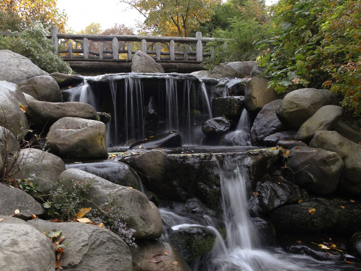 Budget Nature outdoor tree rock Waterfall water body of water watercourse stream water feature botany River pond autumn Garden backyard rapid