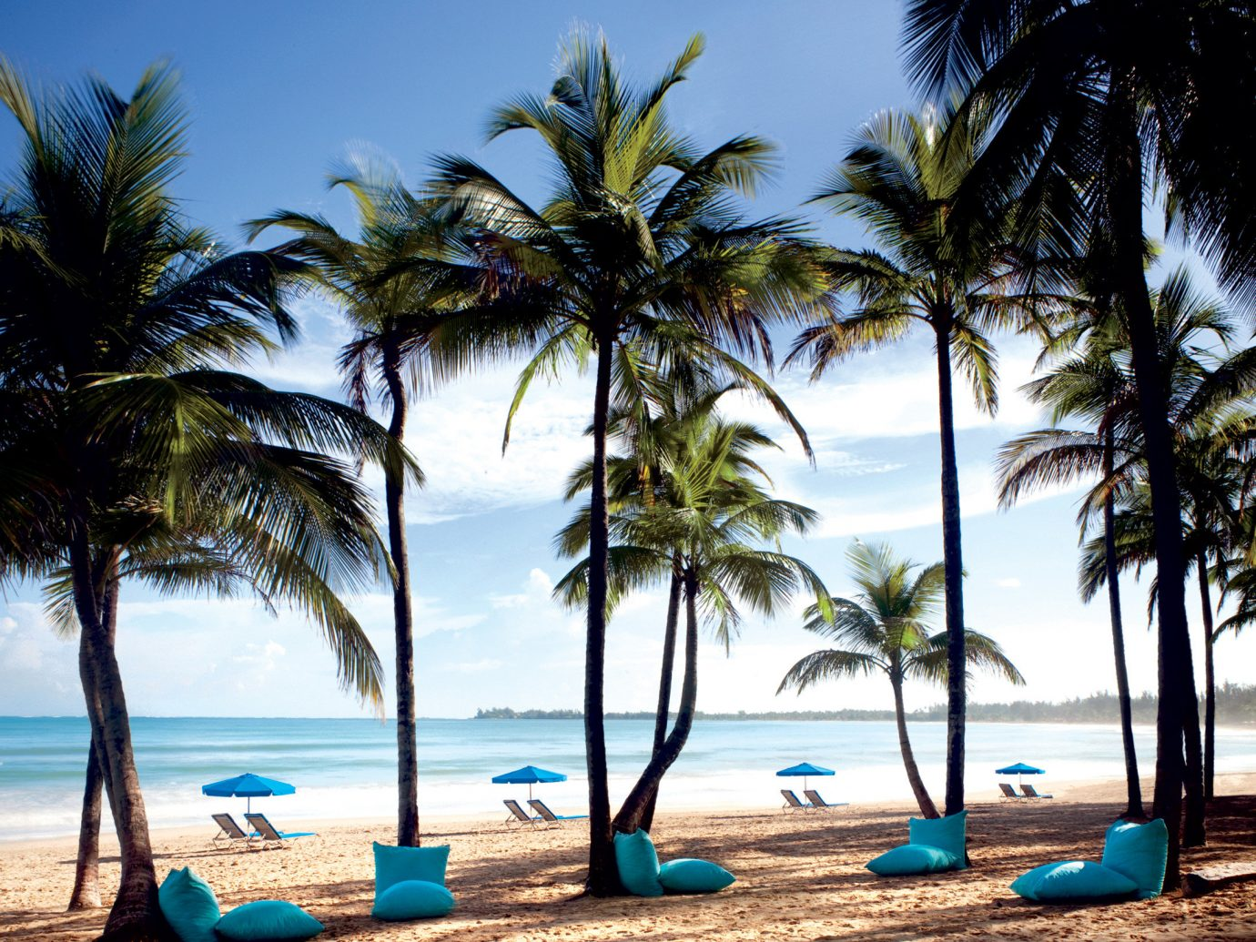 Beach Beachfront Jetsetter Guides Luxury Ocean Play Resort tree outdoor palm water sky body of water Sea caribbean shore palm family vacation tropics plant Coast lined arecales woody plant bay sandy Island Lagoon shade sand line