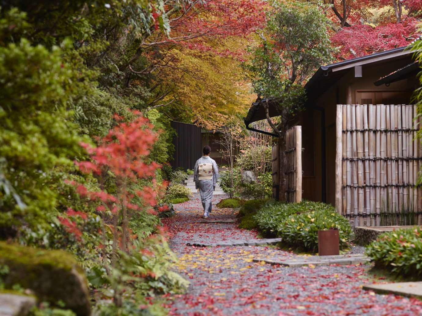 Beauty Health + Wellness Japan Kyoto San Francisco Travel Tips leaf Nature plant Garden tree autumn walkway landscape house shrub grass home yard spring landscaping maple tree backyard flower Courtyard real estate outdoor structure lawn estate