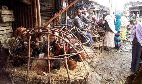Food + Drink outdoor person hay pile market slum