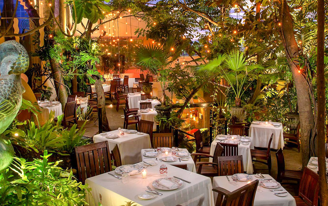 Food + Drink Mexico Puerto Vallarta tree table outdoor plant restaurant Jungle backyard outdoor structure leisure