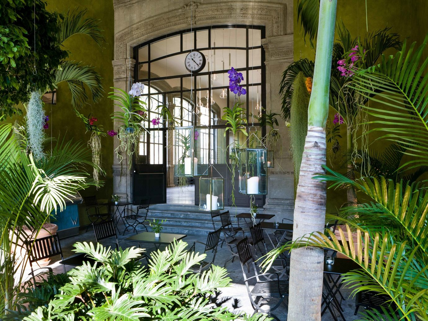 Arts + Culture Italy Milan property arecales palm tree plant Courtyard home tree outdoor structure house real estate hacienda estate Garden condominium