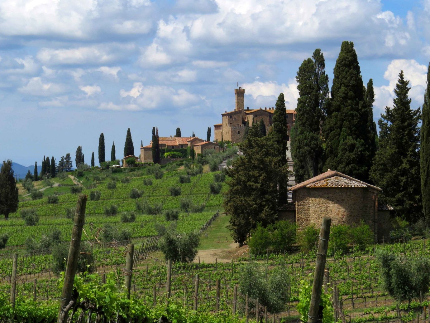 europe Hotels Italy Romance sky vegetation Village field tree rural area agriculture Vineyard hill biome grass landscape mountain grassland shrubland cloud escarpment estate historic site meadow mount scenery