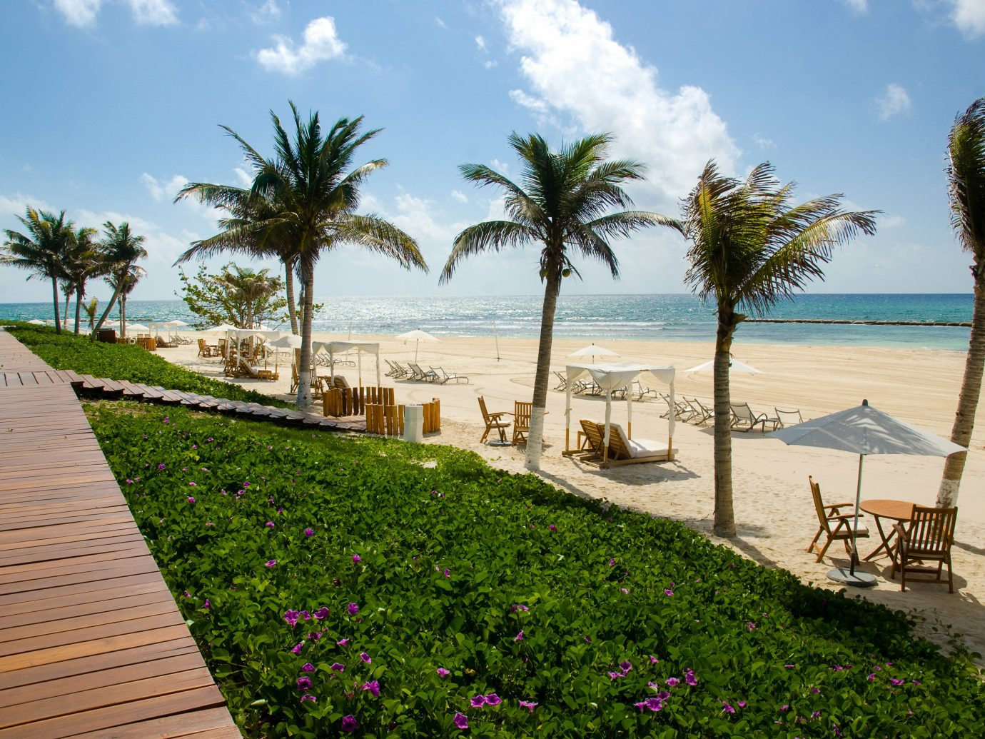 All-inclusive All-Inclusive Resorts Mexico Riviera Maya, Mexico Resort palm tree arecales property tree sky Sea Beach real estate vacation estate walkway tropics leisure plant tourism Villa boardwalk