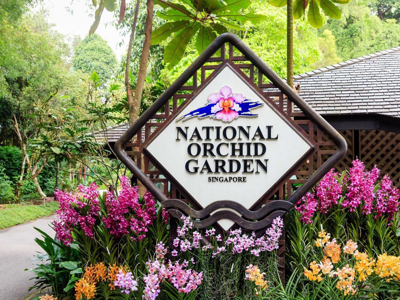 Arts + Culture Singapore Southeast Asia Trip Ideas tree flower outdoor plant Nature flora purple Garden spring flowering plant sign grass shrub recreation plantation botanical garden bushes decorated colorful surrounded