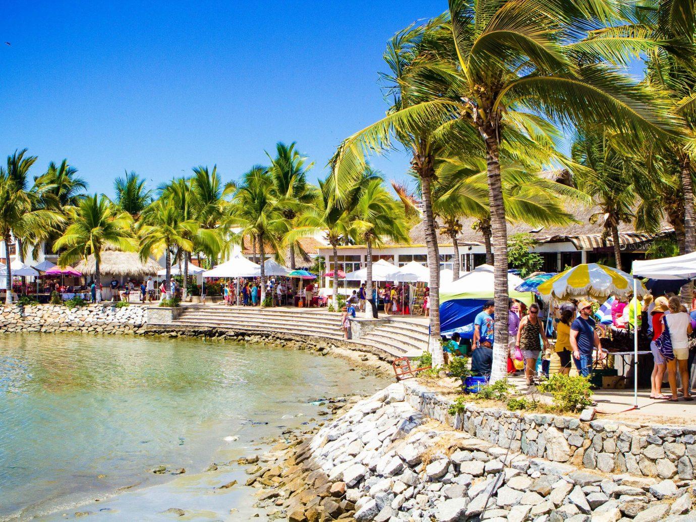 Food + Drink Mexico Puerto Vallarta body of water Beach Resort leisure tourism tree palm tree caribbean arecales water sky vacation tropics Coast shore recreation Sea plant Ocean bay