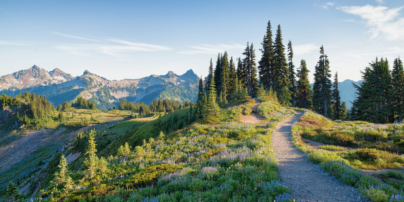 things to do in the American Northwest