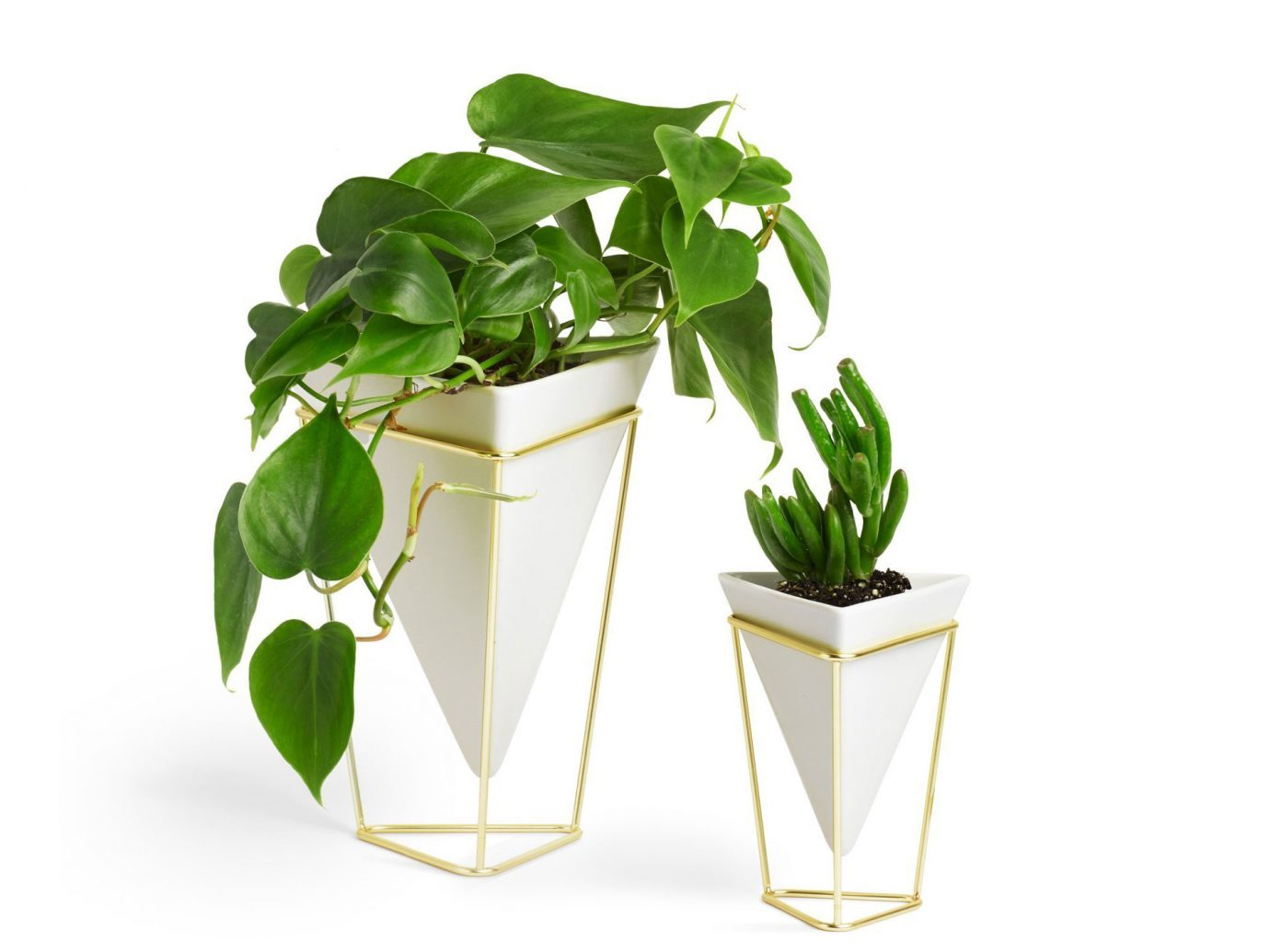 Umbra Trigg Desktop Planter