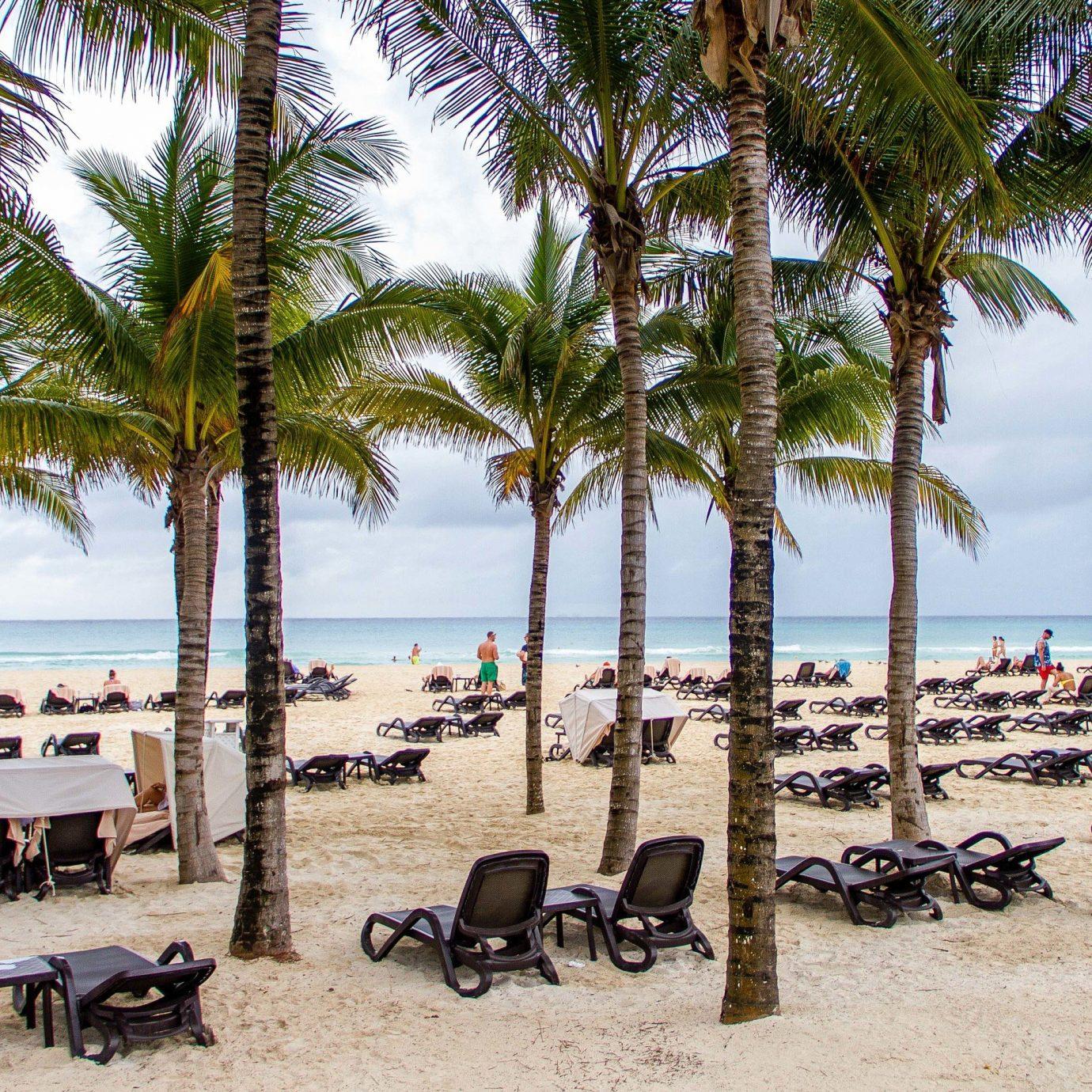 All-inclusive All-Inclusive Resorts Mexico Riviera Maya, Mexico Beach arecales palm tree tree Resort tropics shore plant caribbean Sea sky sand coconut