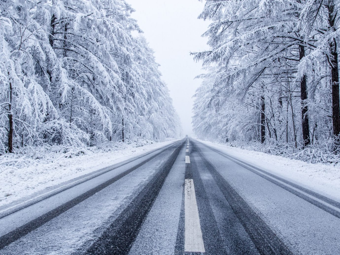 Road Passing Through Snowy Forest