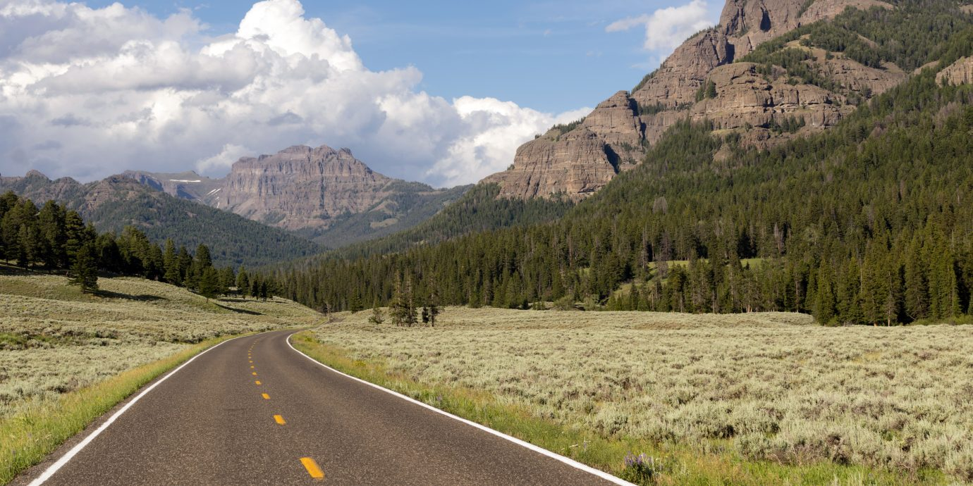 Winding road leads into the mountains of Yellowstone