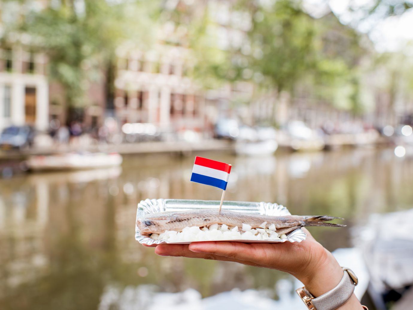Holding a fresh harring with onion and netherland flag on the water channel background in Amsterdam