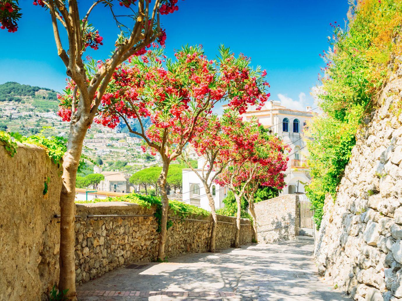 Street in Ravello village, Amalfi coast of Italy, toned image