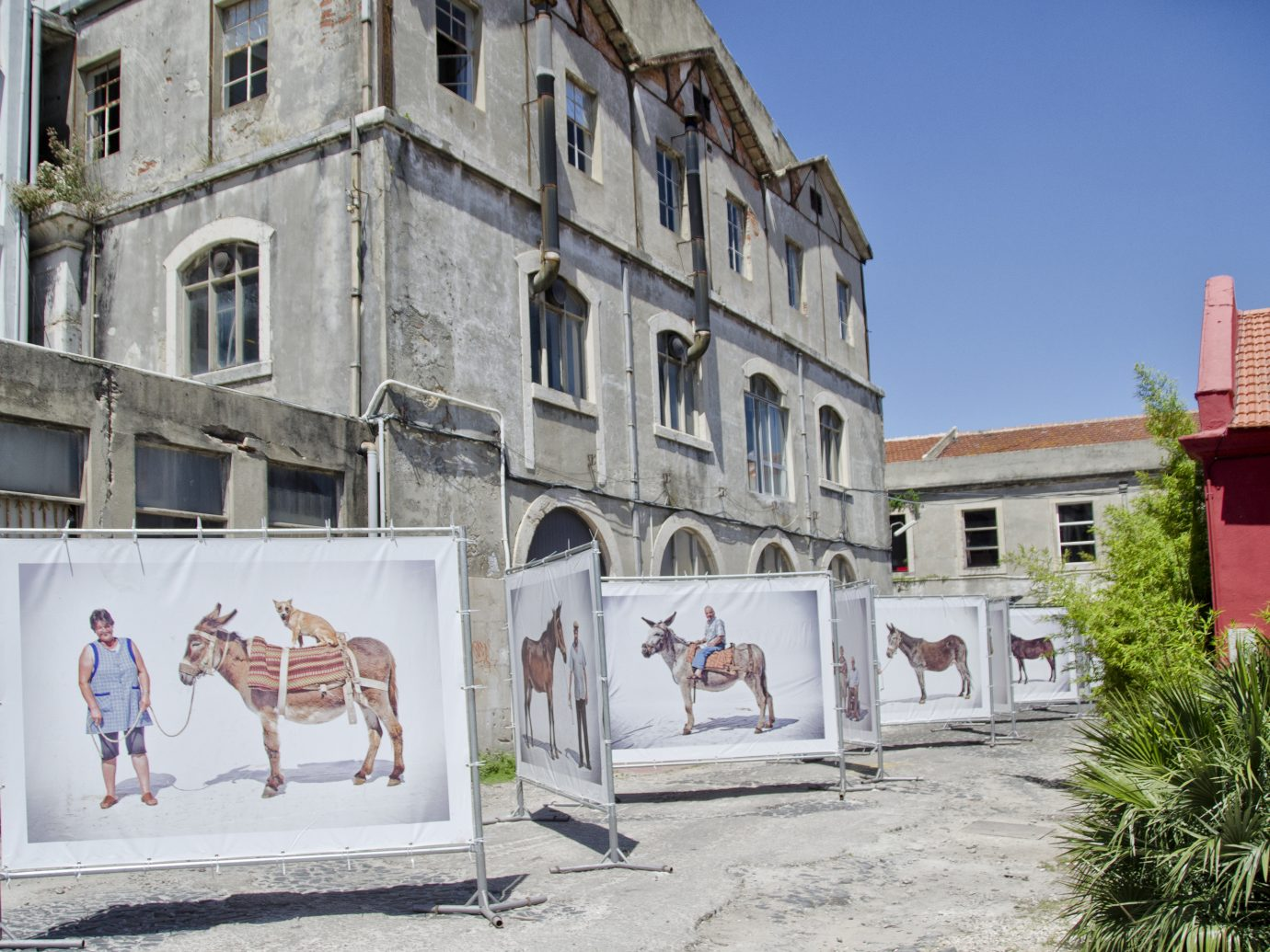 Open day at LX Factory with an outdoor art installation featuring large animals on white cloth