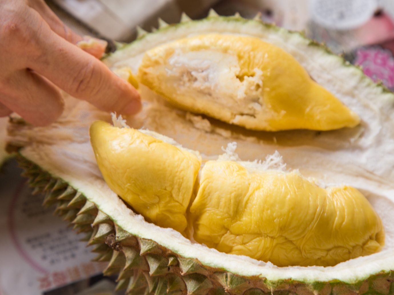 musang king durian fruit