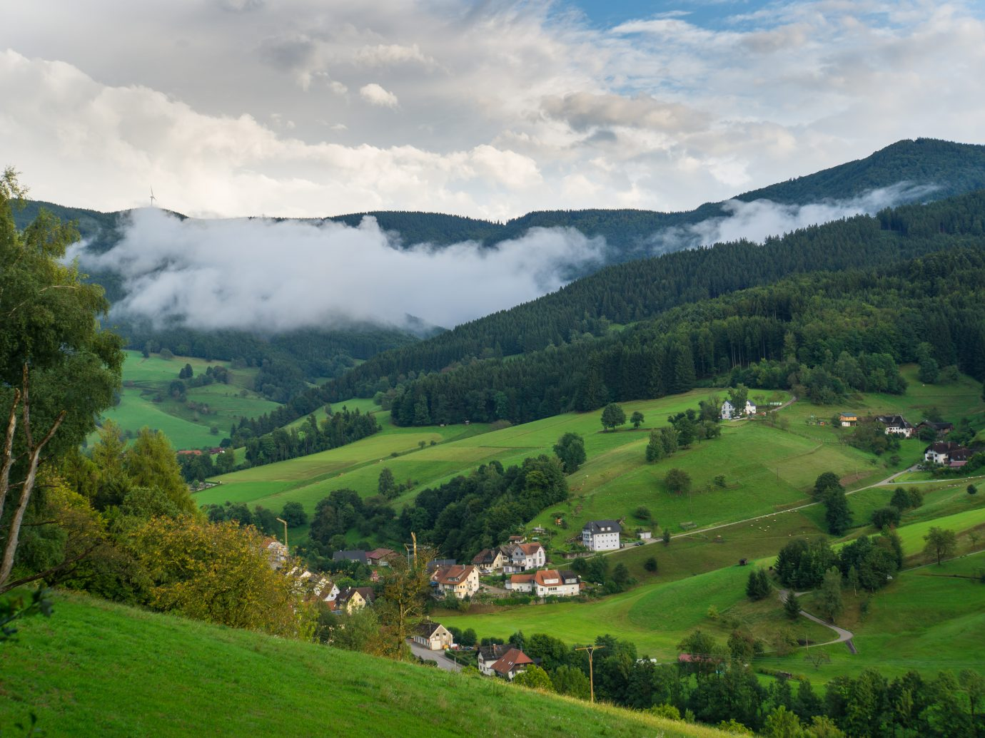 Black forest Germany with little village from above at dawn with fog