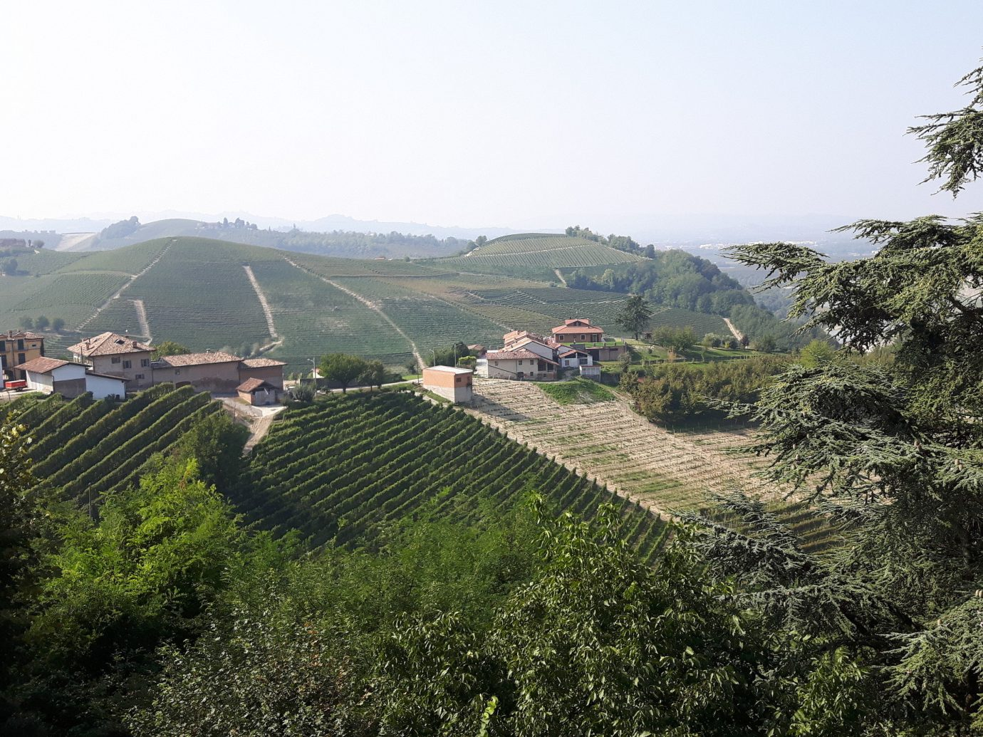 View of Piedmont in Italy