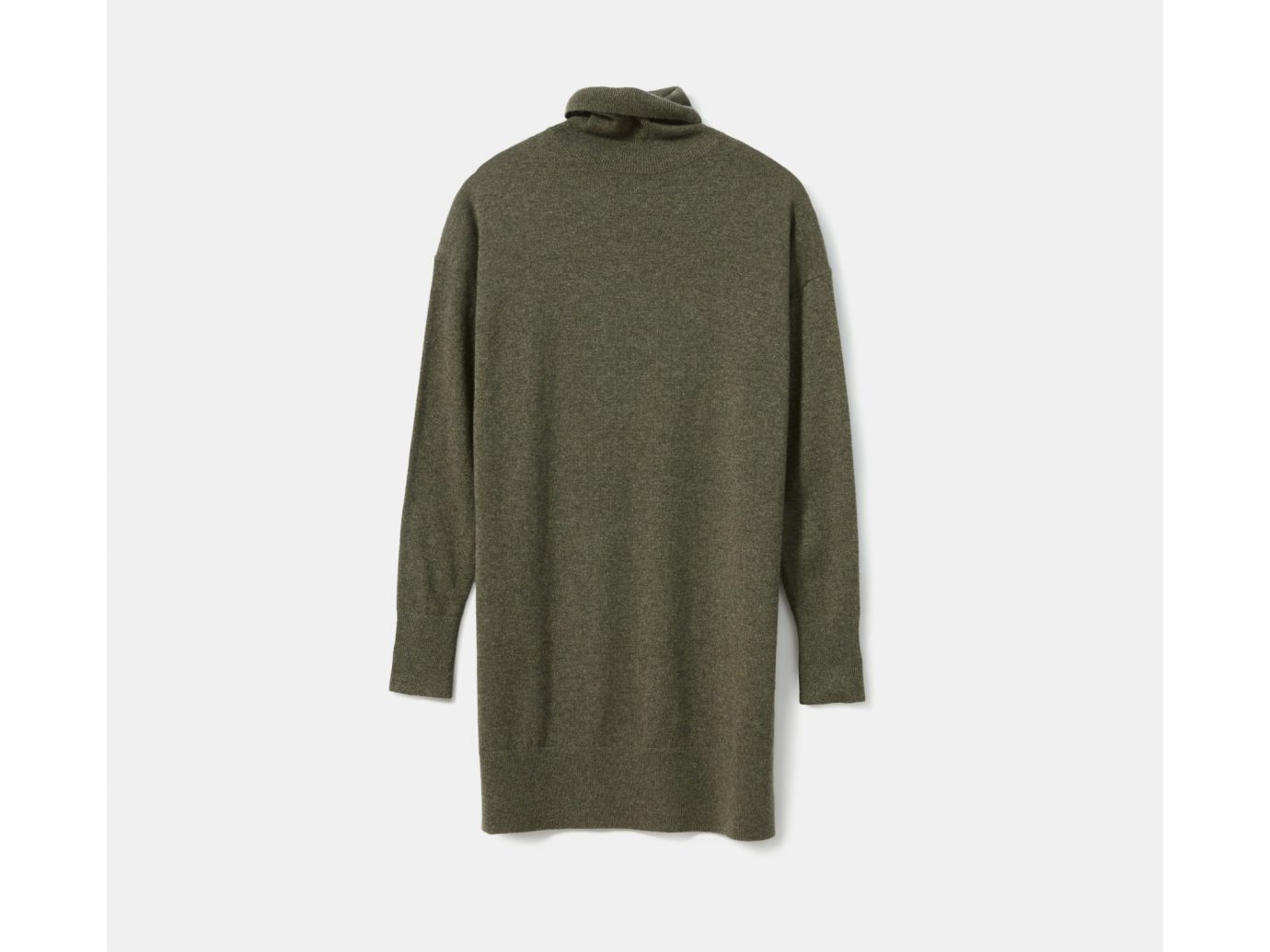 Everlane The Cashmere Turtleneck Dress