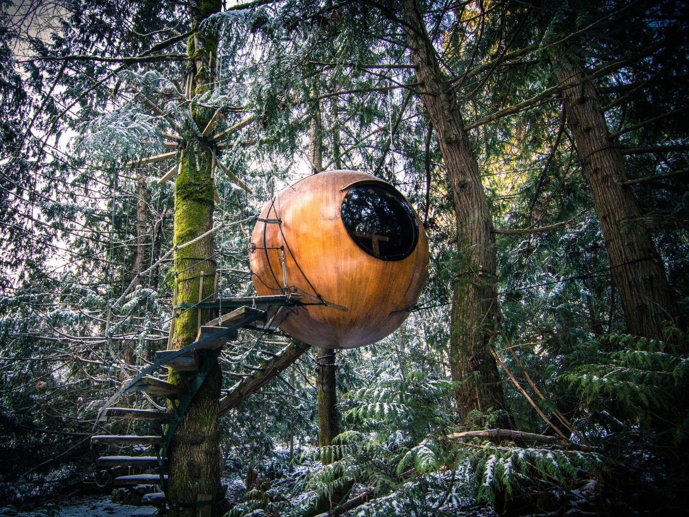 Sphere hotel room in the trees
