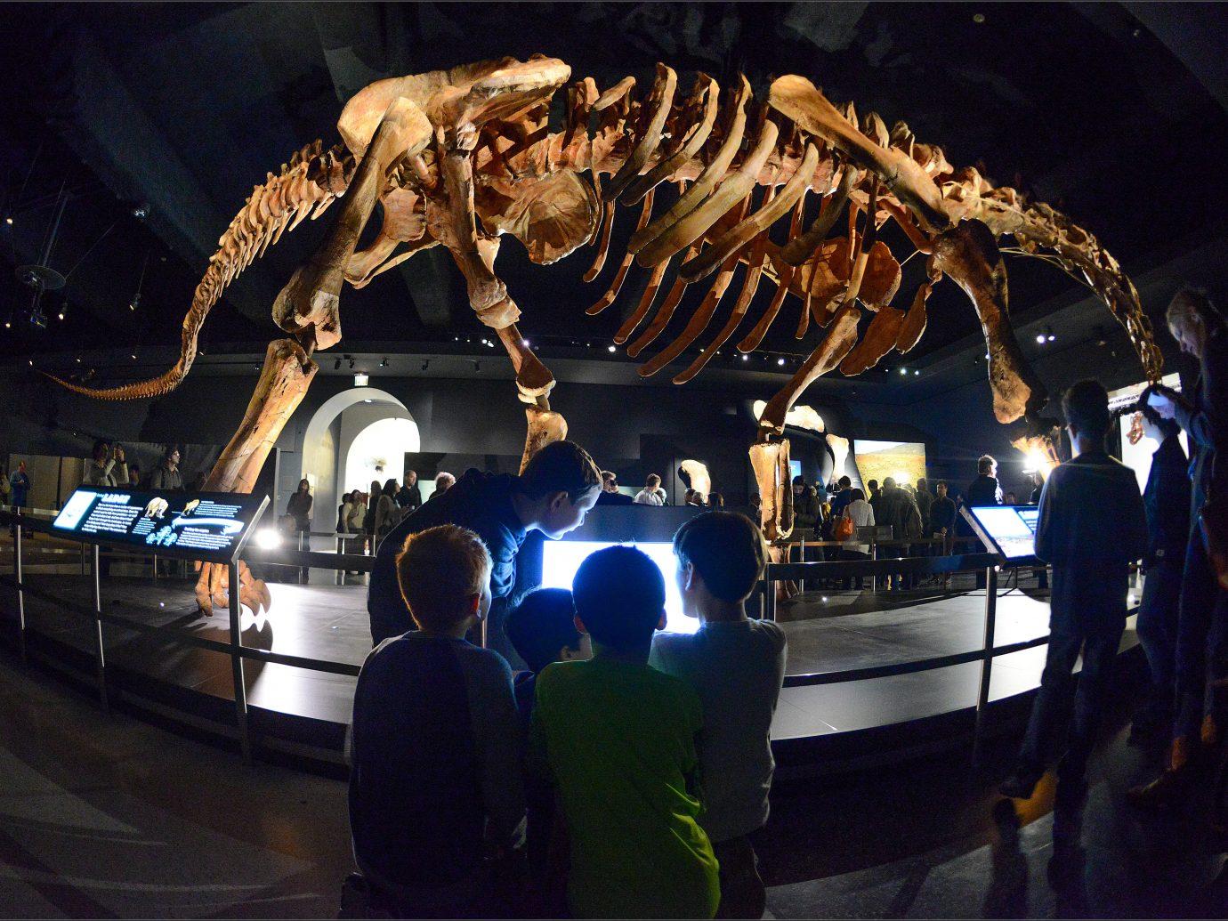 children looking at bones of a titanosaur
