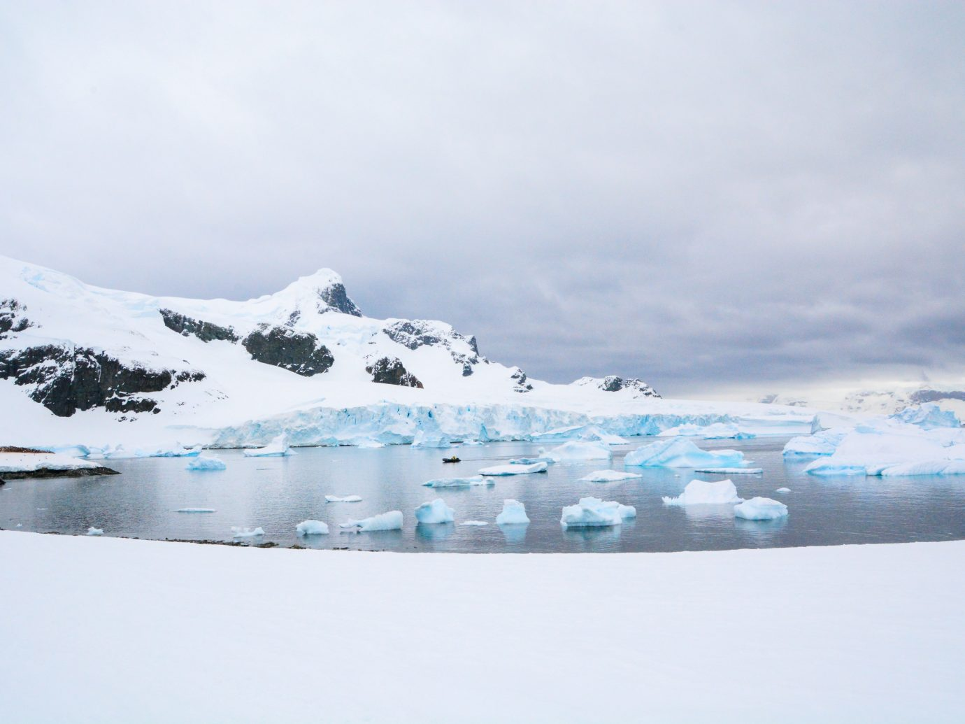 Cuverville Island icebergs