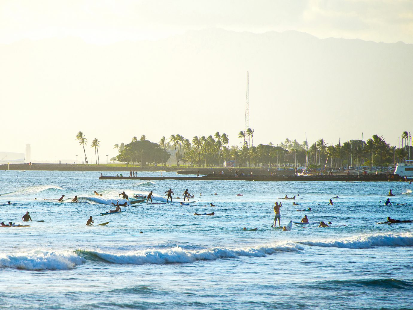 Many people surfing on surfboards and near Hawaii
